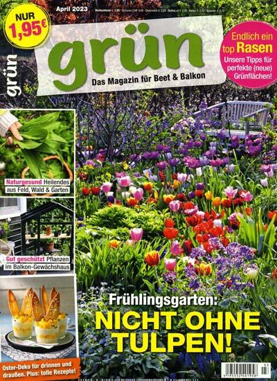 Grün - Kreativ mit Blumen & Pflanzen im Abo ab 21,09€