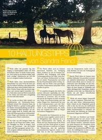 Titelbild der Ausgabe 70/2018 von 10 HALTUNGSTIPPS von Sandra Fencl. Zeitschriften als Abo oder epaper bei United Kiosk online kaufen.
