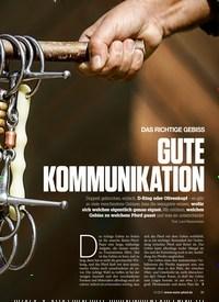 Titelbild der Ausgabe 100/2018 von DAS RICHTIGE GEBISS: GUTE KOMMUNIKATION. Zeitschriften als Abo oder epaper bei United Kiosk online kaufen.