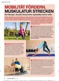 Titelbild der Ausgabe 30/2019 von BESSER REITEN: MOBILITÄT FÖRDERN, MUSKULATUR STRECKEN. Zeitschriften als Abo oder epaper bei United Kiosk online kaufen.