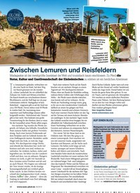 Titelbild der Ausgabe 40/2019 von GLOBETROTTER: Zwischen Lemuren und Reisfeldern. Zeitschriften als Abo oder epaper bei United Kiosk online kaufen.