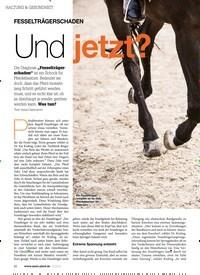 Titelbild der Ausgabe 100/2019 von FESSELTRÄGERSCHADEN: Und jetzt?. Zeitschriften als Abo oder epaper bei United Kiosk online kaufen.