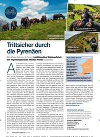 Titelbild der Ausgabe 110/2019 von GLOBETROTTER: Trittsicher durch die Pyrenäen. Zeitschriften als Abo oder epaper bei United Kiosk online kaufen.