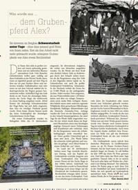 Titelbild der Ausgabe 30/2020 von Was wurde aus … dem Grubenpferd Alex?. Zeitschriften als Abo oder epaper bei United Kiosk online kaufen.