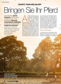 Titelbild der Ausgabe 60/2020 von SCHRITT, TRAB UND GALOPP: Bringen Sie Ihr Pferd zum Strahlen. Zeitschriften als Abo oder epaper bei United Kiosk online kaufen.