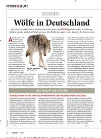 Titelbild der Ausgabe 30/2019 von PFERDE & LEUTE:Wölfe in Deutschland. Zeitschriften als Abo oder epaper bei United Kiosk online kaufen.