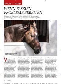 Titelbild der Ausgabe 101/2019 von WENN FASZIEN PROBLEME BEREITEN. Zeitschriften als Abo oder epaper bei United Kiosk online kaufen.