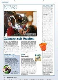 Titelbild der Ausgabe 90/2018 von GESUNDHEIT: NEWS: Zahnarzt seit Urzeiten. Zeitschriften als Abo oder epaper bei United Kiosk online kaufen.