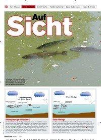 Titelbild der Ausgabe 40/2018 von Auf Sicht. Zeitschriften als Abo oder epaper bei United Kiosk online kaufen.