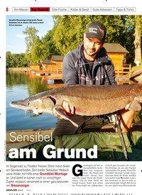 Titelbild der Ausgabe 60/2019 von Sensibel am Grund. Zeitschriften als Abo oder epaper bei United Kiosk online kaufen.