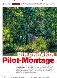 Titelbild der Ausgabe 20/2020 von Die perfekte Pilot-Montage. Zeitschriften als Abo oder epaper bei United Kiosk online kaufen.