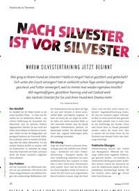 Titelbild der Ausgabe 2/2020 von NACH SILVESTER IST VOR SILVESTER: WARUM SILVESTERTRAINING JETZT BEGINNT. Zeitschriften als Abo oder epaper bei United Kiosk online kaufen.