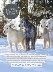 Titelbild der Ausgabe 3/2020 von LIEBENS-WÜRDIGER LULATSCH. Zeitschriften als Abo oder epaper bei United Kiosk online kaufen.