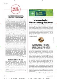 Titelbild der Ausgabe 8/2020 von NEWS RUND UM DEN HUND. Zeitschriften als Abo oder epaper bei United Kiosk online kaufen.