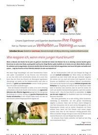 Titelbild der Ausgabe 1/2021 von Unsere Expertinnen und Experten beantworten Ihre Fragen, hier zu Themen rund um Verhalten und Training von Hunden.. Zeitschriften als Abo oder epaper bei United Kiosk online kaufen.