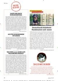 Titelbild der Ausgabe 3/2021 von AKTUELL: NEWS RUNDUM DEN HUND. Zeitschriften als Abo oder epaper bei United Kiosk online kaufen.