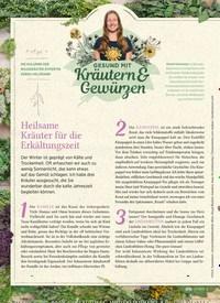 Titelbild der Ausgabe 6/2019 von DIE KOLUMNE DER WILDKRÄUTER-EXPERTIN GERDA HOLZMANN: Heilsame Kräuter für die Erkältungszeit. Zeitschriften als Abo oder epaper bei United Kiosk online kaufen.