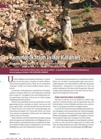 Titelbild der Ausgabe 2/2019 von Kommunikation in der Kalahari: Worüber Erdmännchen sich so unterhalten. Zeitschriften als Abo oder epaper bei United Kiosk online kaufen.