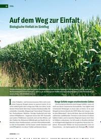 Titelbild der Ausgabe 4/2019 von Auf dem Weg zur Einfalt: Biologische Vielfalt im Sinkflug. Zeitschriften als Abo oder epaper bei United Kiosk online kaufen.