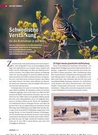 Titelbild der Ausgabe 3/2019 von Schwedische Verstärkung für die Birkhühner in der Rhön. Zeitschriften als Abo oder epaper bei United Kiosk online kaufen.