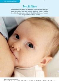 Titelbild der Ausgabe 3/2013 von Im Stillen. Zeitschriften als Abo oder epaper bei United Kiosk online kaufen.