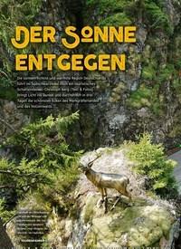 Titelbild der Ausgabe 8/2019 von Der Sonne entgegen. Zeitschriften als Abo oder epaper bei United Kiosk online kaufen.