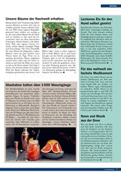 Titelbild der Ausgabe 5/2019 von Unsere Bäume der Nachwelt erhalten. Zeitschriften als Abo oder epaper bei United Kiosk online kaufen.