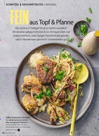 Titelbild der Ausgabe 2/2019 von SCHNITZEL & GESCHNETZELTES / GEFLÜGEL: FEIN aus Topf & Pfanne. Zeitschriften als Abo oder epaper bei United Kiosk online kaufen.