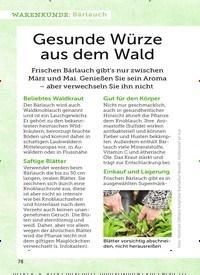 Titelbild der Ausgabe 7/2019 von WARENKUNDE: Bärlauch: Gesunde Würze aus dem Wald. Zeitschriften als Abo oder epaper bei United Kiosk online kaufen.