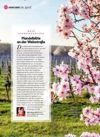 Titelbild der Ausgabe 4/2020 von im April: MEIN LIEBLINGSPLATZ: Mandelblüte an der Weinstraße. Zeitschriften als Abo oder epaper bei United Kiosk online kaufen.