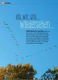 Titelbild der Ausgabe 3/2020 von Bis wir uns wiedersehen. Zeitschriften als Abo oder epaper bei United Kiosk online kaufen.