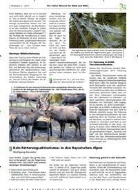 Titelbild der Ausgabe 2/2019 von Kein Fütterungsaktionismus in den Bayerischen Alpen. Zeitschriften als Abo oder epaper bei United Kiosk online kaufen.