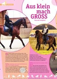 Titelbild der Ausgabe 1/2019 von Aus klein mach GROSS Pony oder Großpferd?. Zeitschriften als Abo oder epaper bei United Kiosk online kaufen.