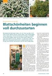 Titelbild der Ausgabe 4/2018 von Rhododendron auf der IPM: Blattschönheiten beginnen voll durchzustarten. Zeitschriften als Abo oder epaper bei United Kiosk online kaufen.