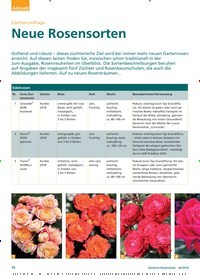 Titelbild der Ausgabe 6/2018 von Züchterumfrage: Neue Rosensorten. Zeitschriften als Abo oder epaper bei United Kiosk online kaufen.