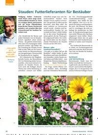 Titelbild der Ausgabe 9/2018 von Stauden: Futterlieferanten für Bestäuber. Zeitschriften als Abo oder epaper bei United Kiosk online kaufen.