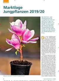 Titelbild der Ausgabe 2/2020 von Marktlage Jungpflanzen 2019/20. Zeitschriften als Abo oder epaper bei United Kiosk online kaufen.