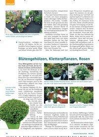 Titelbild der Ausgabe 8/2018 von Blütengehölzen, Kletterpflanzen, Rosen. Zeitschriften als Abo oder epaper bei United Kiosk online kaufen.