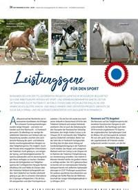 Titelbild der Ausgabe 2/2020 von Leistungsgene FÜR DEN SPORT. Zeitschriften als Abo oder epaper bei United Kiosk online kaufen.