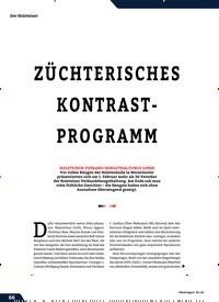 Titelbild der Ausgabe 3/2020 von Holsteiner Verband Hengsthaltungs GmbH Hengstpräsentation: ZÜCHTERISCHES KONTRASTPROGRAMM. Zeitschriften als Abo oder epaper bei United Kiosk online kaufen.