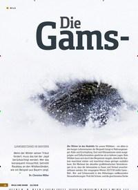 Titelbild der Ausgabe 23/2018 von Die Gams-Misere. Zeitschriften als Abo oder epaper bei United Kiosk online kaufen.