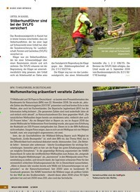 Titelbild der Ausgabe 2/2019 von KURZ UND BÜNDIG. Zeitschriften als Abo oder epaper bei United Kiosk online kaufen.