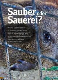 Titelbild der Ausgabe 2/2019 von Sauber oder Sauerei?. Zeitschriften als Abo oder epaper bei United Kiosk online kaufen.