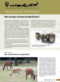 Titelbild der Ausgabe 3/2019 von Neues aus der Wildbiologie. Zeitschriften als Abo oder epaper bei United Kiosk online kaufen.