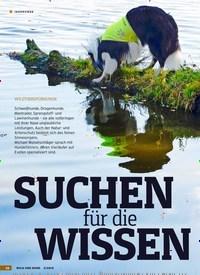 Titelbild der Ausgabe 3/2019 von WILDTIERSPÜRHUNDE: SUCHEN für die WISSEN SCHAFT. Zeitschriften als Abo oder epaper bei United Kiosk online kaufen.