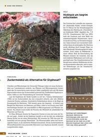Titelbild der Ausgabe 5/2019 von KURZ UND BÜNDIG: Neues aus der Wildbiologie. Zeitschriften als Abo oder epaper bei United Kiosk online kaufen.