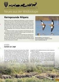 Titelbild der Ausgabe 6/2019 von Neues aus der Wildbiologie: Kerngesunde Nilgans. Zeitschriften als Abo oder epaper bei United Kiosk online kaufen.