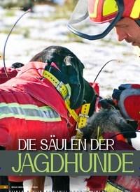 Titelbild der Ausgabe 6/2019 von JAGDHUNDE: DIE SÄULEN DER: JAGDHUNDEAUSBILDUNG. Zeitschriften als Abo oder epaper bei United Kiosk online kaufen.