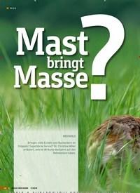 Titelbild der Ausgabe 7/2019 von Mast Mabsrisnge?:REHWILD. Zeitschriften als Abo oder epaper bei United Kiosk online kaufen.