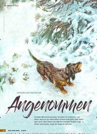 Titelbild der Ausgabe 8/2019 von ERLEBTE JAGD: GEFÄHRLICHE NACHSUCHE: Angenommen. Zeitschriften als Abo oder epaper bei United Kiosk online kaufen.